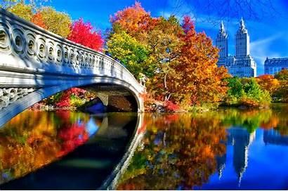 Central Park York Autumn Landscape Bridge Sky