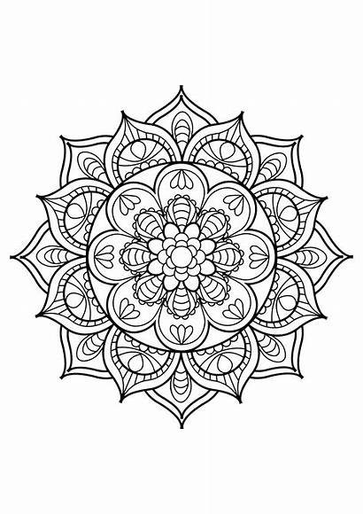 Coloring Mandalas Pages Simple Coloriages Adultes Pour