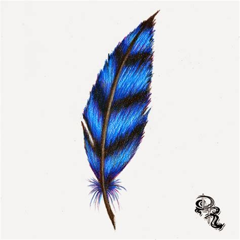 colored feathers derrick the artist how to draw a feather with colored pencils