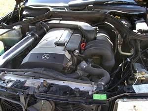 Sacreddisorder 1993 Mercedes