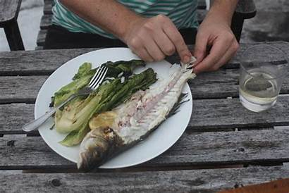 Fish Grilled Ikan Grill Bakar Gifs Easiest