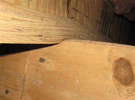 Fix Sagging Deck Joist