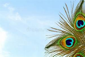 Beautiful Background With Peacock Feather In Sky ...