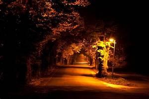 Pleasant night landscape with a romantic long asphalt road