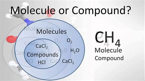 Molecule Vs Compound Examples And Practice Youtube