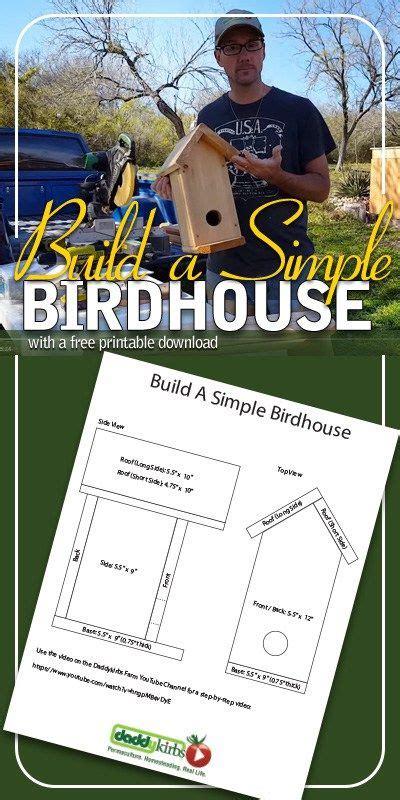 build  simple birdhouse diy birdhouse plans outdoor