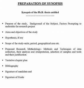 Synopsis Amity University