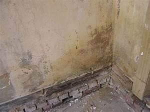 Wie Bekomme Ich Feuchtigkeit Aus Der Wand : wie entferne ich schimmel wundersch ne wie entferne ich schimmel joedesigns wie entferne ich ~ Sanjose-hotels-ca.com Haus und Dekorationen