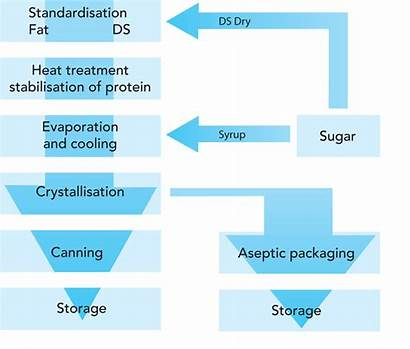 Milk Condensed Process Steps Processing Sweetened Unsweetened