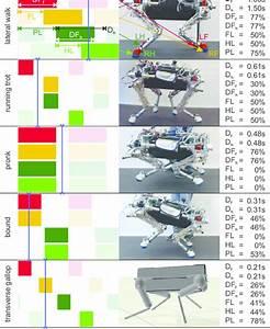 Gait Diagrams Of Various Gaits Using The Aps