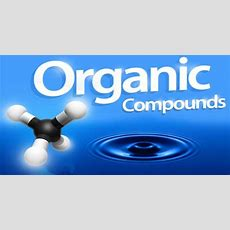 Organic Compound  Assignment Point