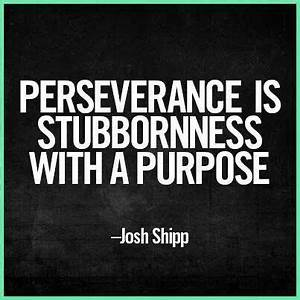 Quotes About Perseverance And Persistence. QuotesGram
