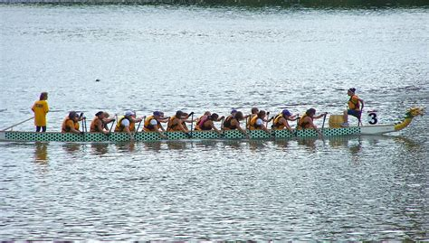 Row En Boat by Free Images Paddle Vehicle Rowing Boat Competition