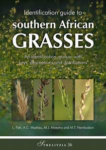 Pdf  Identification Guide To Southern African Grasses  An