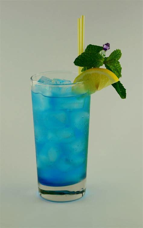 oasis highball visual recipe  cocktail hunter