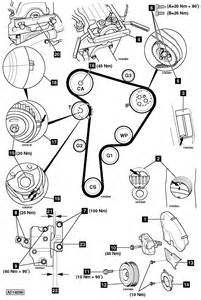 Calage Distribution Golf 4 Tdi 110 : i need an experienced vet tech have a 2001 vw beetle diesel when i got the car the fuel pump ~ Medecine-chirurgie-esthetiques.com Avis de Voitures
