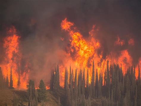 Idaho Wildfire Grows Quickly, Could Keep Burning Until ...