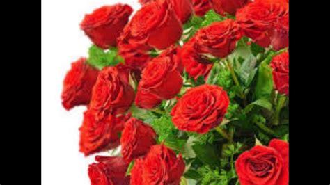 zum geburtstag rote rosen youtube