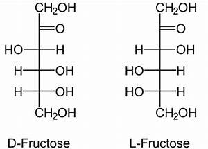 Fructose – Uptake by the Cell, Degradation and Biosynthesis