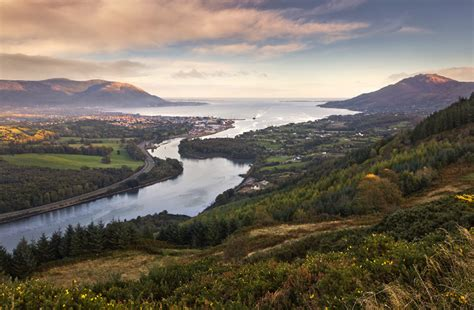 Carlingford Lough View