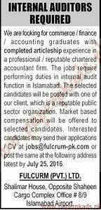Internal Auditors Required - The News Jobs ads 17 July ...