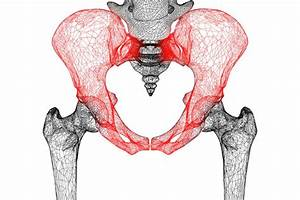 Pelvic floor pain freedom physio pilates for Pelvic floor muscle spasms