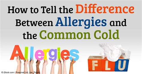 difference  food allergy  food intolerance