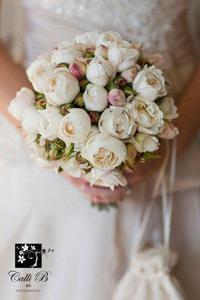 hand held posy bouquet  david austin roses image