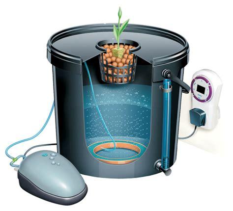home hydroponics kit my diy aquaponics system
