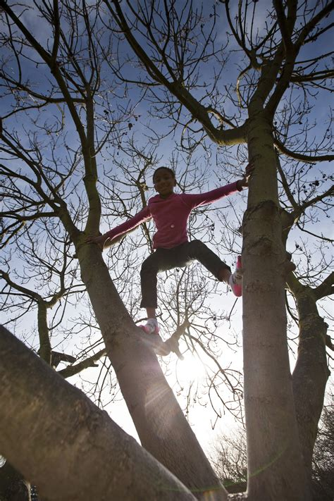 Nature Deficit Specialist Worries Guardians - The ...