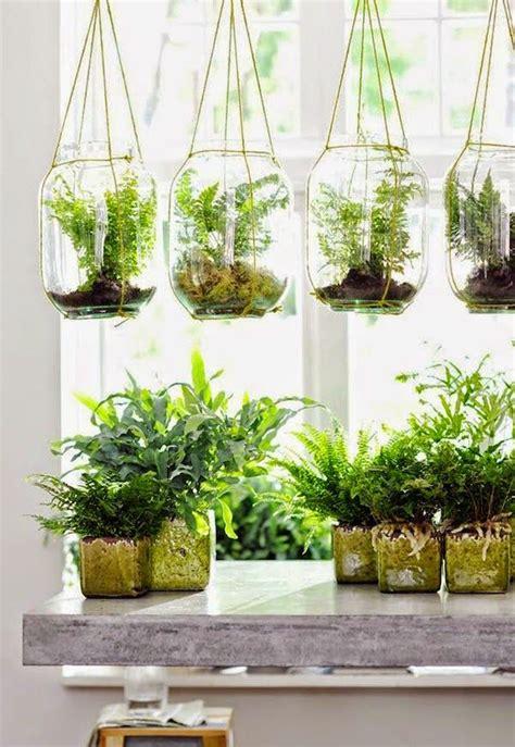 indoor hanging plant ideas  Design Decoration