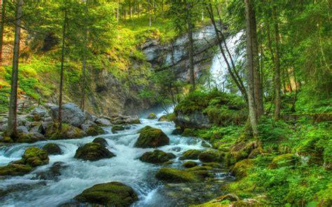 Wallpaper Forest, Waterfall, River, Rocks, Landscape ...