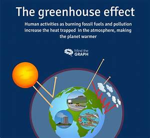 Carbon Cycle And Greenhouse Effect