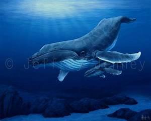 Humpback Whale - 8x10 Fine Art Print From An Original ...