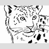 Cute Animals Coloring Pages | 819 x 630 jpeg 103kB