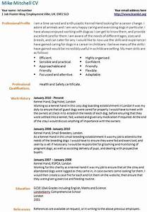 Career Change Resume Samples Sample Resumes For A Career