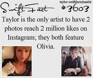 154 best Taylor Swift's Cats images on Pinterest ...