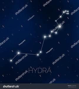Hydra Constellation In Night Sky Stock Vector Illustration ...