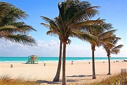 Beach South Florida Miami America States United