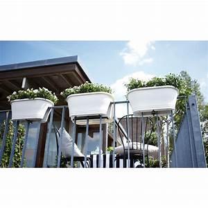 Blumentopf Balkongeländer Hängen : balkonkasten corsica flower bridge l60cm ~ Buech-reservation.com Haus und Dekorationen