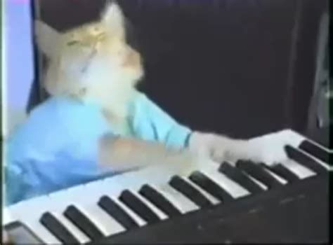Cat Playing Piano Meme - keyboard cat meme pictures to pin on pinterest pinsdaddy