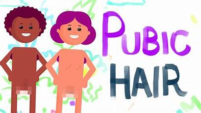 Pubic Hair Why Pubes Shave Should Shouldn