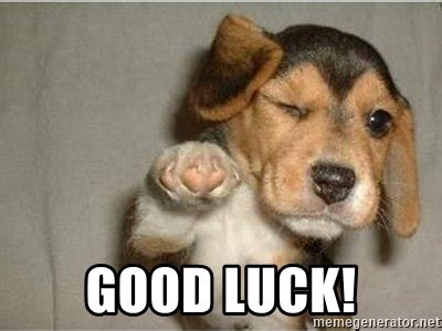 Goodluck Meme - good luck funny winking dog meme generator