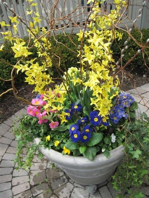 Ideas For Spring Container Gardens  Blue And White Home