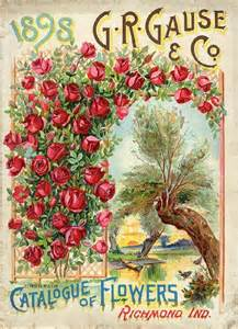 plant catalogues 1898 flower catalog seed packets catalogs trade cards pinterest beautiful artwork