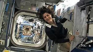 Sleeping quarters on the ISS - BBC News