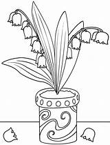 Lily Coloring Pages Valley sketch template