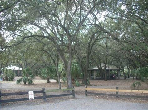 oak shaded picnic area picture  kendall indian hammocks park miami tripadvisor