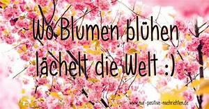 Blume Und Leben : wo blumen bl hen l chelt die welt spruch zum valtentinstag ~ Articles-book.com Haus und Dekorationen