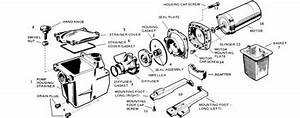 Mypool  Hayward Super Pump 1600 Series Parts List